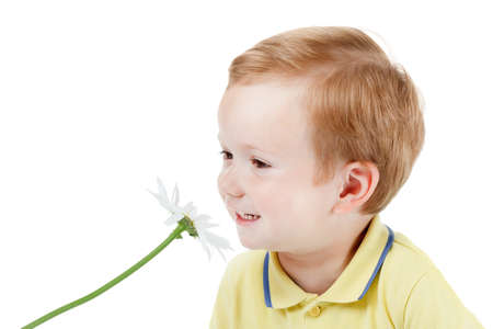 Smiling red-haired boy and smelling daisy isolate on white background Zdjęcie Seryjne