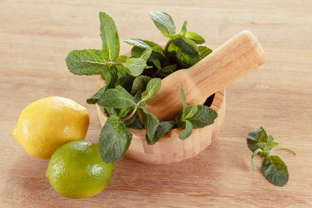 Fresh mint leaves in a mortar, green lime and lemon Zdjęcie Seryjne