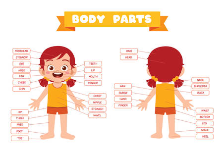 happy cute kid girl body part anatomy