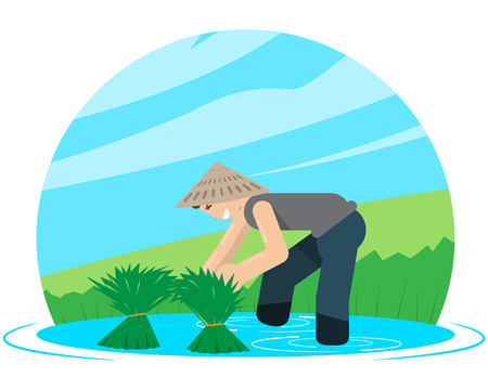 collect: Workers collect rice harvest on the field. Vector illustration