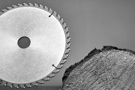Circular saw with sharp teeth saws a cut of wood on a dark background. Zdjęcie Seryjne