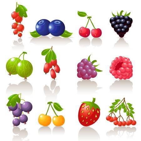 grosella: Berry conjunto de iconos Vectores
