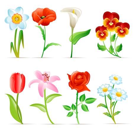 Flower set Stock Vector - 13196970