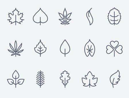 Leaf icons Illustration