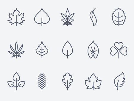 lines: Leaf icons Illustration