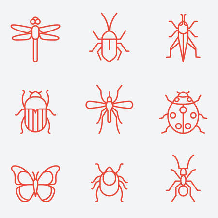 mantis: Insect icon set, thin line style, flat design