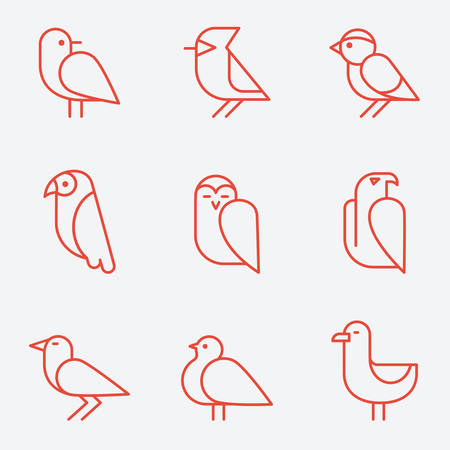 pigeon owl: Bird icons, thin line style, flat design