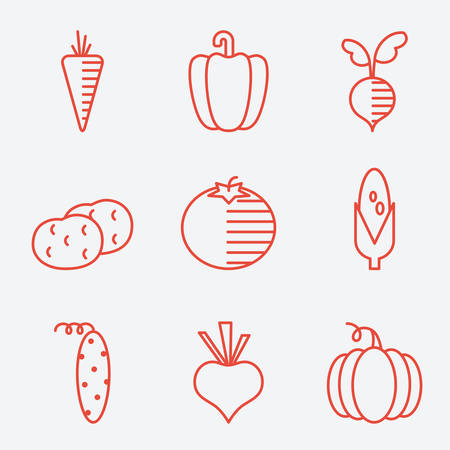 vegetable cook: Vegetables icons, thin line style, flat design