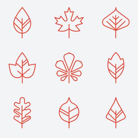 Iconos de la hoja, estilo de línea delgada, diseño plano