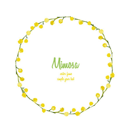 mimosa: Mimosa flower round frame, watercolor illustration