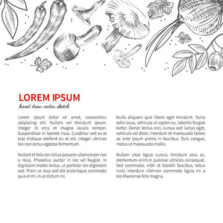 food industry: sketch vegetables, illustration mushrooms, olive, pepper, onion isolated on white, Ideal for use in organic food industry, healthy green food market, vegetarian restaurant menu Illustration
