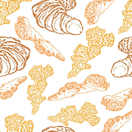 Graphic colorful ginger root, Hand drawn vector seamless pattern, Spices illustration isolated on white background, decorative texture, Kitchen herbs, Design food ingredients for cooking, cosmetic