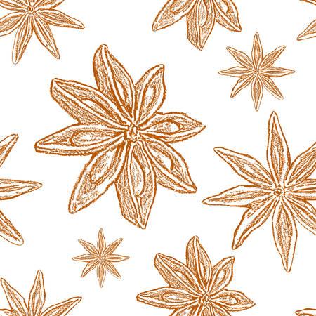 Star anise, badian illustration isolated on white background. Illustration