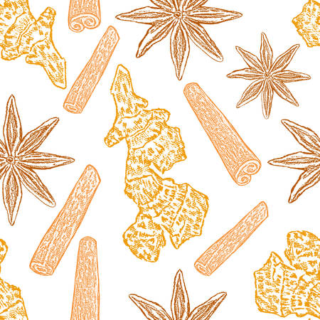 Cinnamon, ginger root, star anise isolated on white background. Illustration