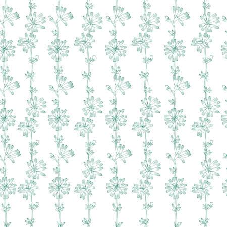 Naadloze vector bloemmotief, witloof bloem hand getekend grafische botanische illustratie, doodle inkt schets geïsoleerd op witte achtergrond, medische andijvie plant lijntekeningen voor ontwerp verpakking, cosmetica Stock Illustratie