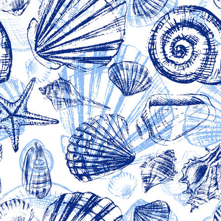 Seashells hand drawn vector graphic etching sketch isolated on white background.