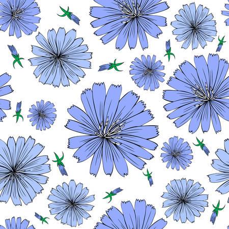 Witlof bloem hand getekende grafische vector kleurrijke illustratie, doodle inkt schets geïsoleerd op een witte achtergrond