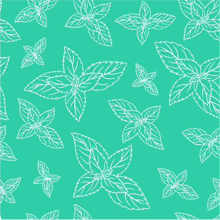 Hand drawn seamless patterns with mint leaves, peppermint, spicy herbs texture.