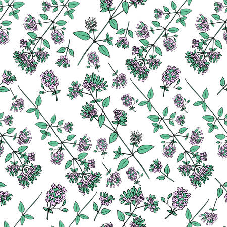 Seamless floral pattern, Blossoming oregano flowers vector doodle sketch hand drawn healing herb isolated on white background, food botanical illustration, design herb for cosmetic, menu, wallpaper