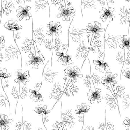 Kosmosbloem, kosmeya hand getrokken inktschets, bloemen vector naadloos patroon, grafische illustratie, wilde bloem Astra, ontwerp voor groetkaart, huwelijksuitnodiging, kosmetische verpakking, schoonheidssalon