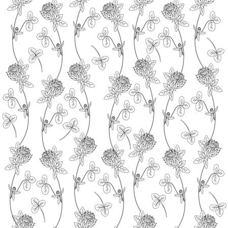 trifolium: Clover, shamrock wild field flower hand drawn vector color sketch isolated on white background, Vector seamless pattern, graphic floral texture background for cosmetics, design package tea, wallpaper Illustration