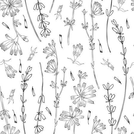 Naadloze vector bloemmotief, witloof, lavendel bloem hand getekend kleurrijke illustratie, doodle inkt schets geïsoleerd op wit, medische andijvie plant, decoratieve achtergrond voor wenskaart, bruiloft Stock Illustratie