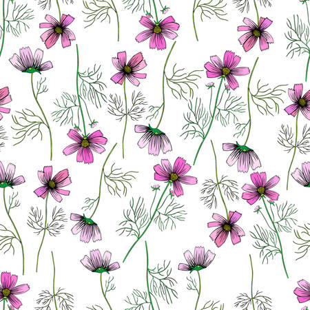 Kosmos flower, kosmeya hand drawn ink sketch, floral vector seamless pattern, colorful illustration, wild flowers astra, design for greeting card, wedding invitation, cosmetic packaging, beauty salon