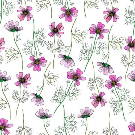 Kosmosbloem, kosmeya hand getrokken inktschets, bloemen vector naadloos patroon, kleurrijke illustratie, wilde bloemen Astra, ontwerp voor groetkaart, huwelijksuitnodiging, kosmetische verpakking, schoonheidssalon