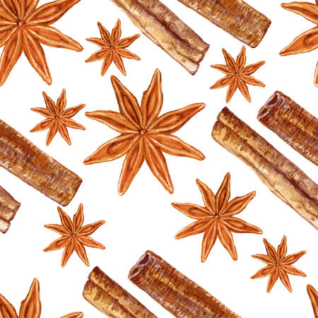 Star anise, cinnamon watercolor vector illustration isolated on white background, Hand drawn seamless pattern badian, Design food, Organic spice ingredient for healthy market, restaurant menu Illustration