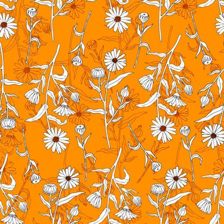 Seamless floral pattern, Calendula flower isolated on irange background, botanical hand drawn doodle vector illustration.