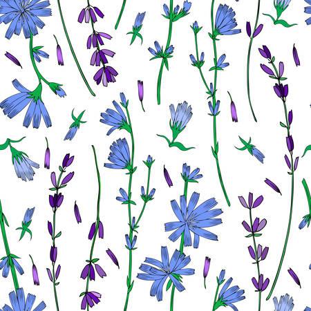 Naadloze vector bloemmotief, witloof, lavendel bloem hand getekend kleurrijke illustratie, doodle inkt schets geïsoleerd op wit, medische andijvie plant, decoratieve achtergrond voor wenskaart, geneeskunde