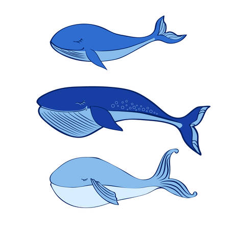 Whale cute cartoon funny illustration isolated on white background, vector graphic colorful doodle animal, Character design for greeting baby card, children invite, baby shower, creation of alphabet