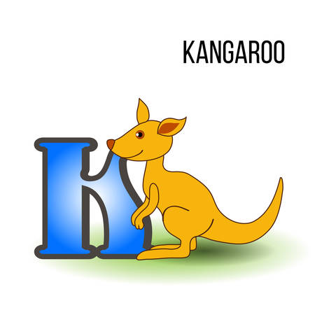 Cute Zoo alphabet K with cartoon kangaroo, wild kid animal vector illustration cat isolated on background, Education for children, preschool, ABC poster for learn to read, character design, mascot