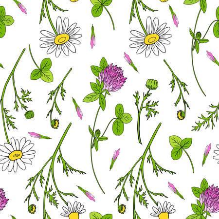 카모마일 야생 필드 꽃, 레드 클로버, 흰색 배경에 격리 된 토끼풀 손으로 그려진 된 데이지 벡터 낙서 그림, 디자인을위한 완벽 한 패턴 패키지 차, 화 일러스트