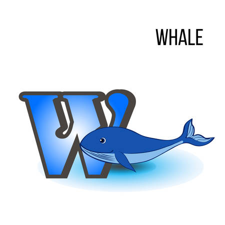 Cute Zoo alphabet W with cartoon blue whale, kid wild animal vector funny illustration isolated on background, Education for children, preschool, ABC poster for learn to read, character design, mascot