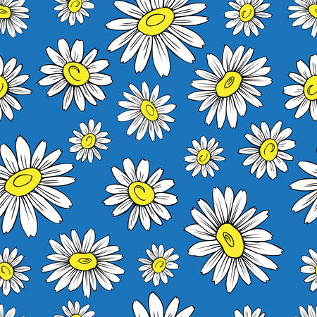 camomile tea: Chamomile wild field flower isolated on blue background, hand drawn daisy sketch vector doodle illustration, seamless floral pattern for design package tea, cosmetic, medicine, textile, decor fabric