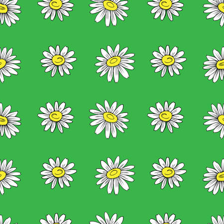 camomile tea: Chamomile wild field flower isolated on green background, hand drawn daisy sketch vector doodle illustration, seamless floral pattern for design package tea, cosmetic, medicine, textile, decor fabric Illustration