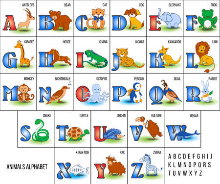 english letters: Cute Zoo alphabet with cartoon animals from A to Z vector illustration isolated on background, Education for children, preschool, ABC poster for learn to read, character design funny cat, antelope etc Stock Photo