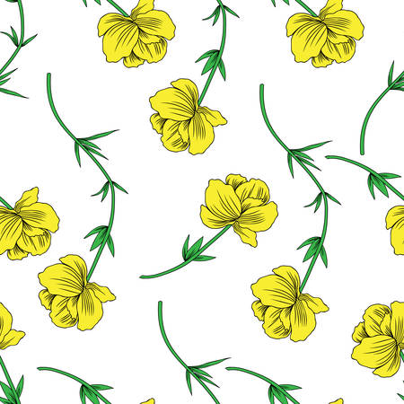 Trollius asiaticus flowers, globeflower hand drawn vector sketch isolated on white, seamless herbal pattern Ranunculus for design package, medicine, wedding invitation, greeting card, cosmetics, paper