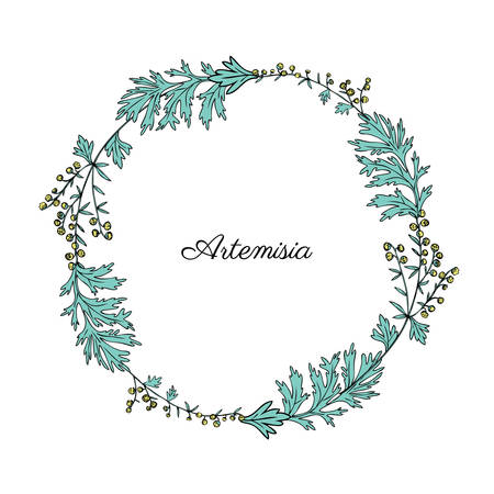 Round frame with Artemisia vulgaris, wreath common wormwood hand drawn vector illustration isolated on white, Also called absinthium, absinthe wormwood, sagebrush herb, mugwort plants for design