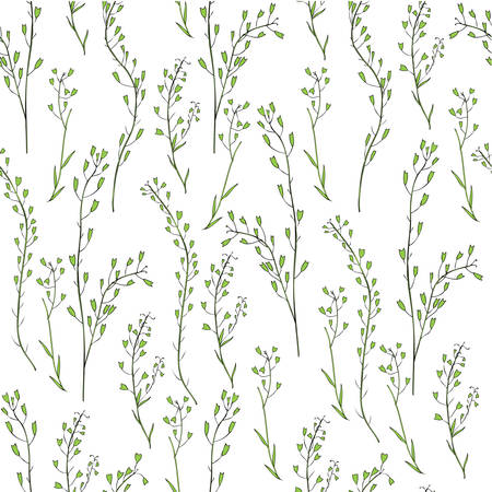 Seamless floral pattern, Capsella flower, Shepherd's purse, Capsella bursa-pastoris, the entire plant, hand drawn vector ink sketch isolated on white, for design cosmetic, textile, natural fabric