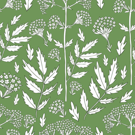 Seamless floral pattern, Valeriana officinalis hand drawn vector illustration isolated on green background, line art herbs texture for design package cosmetic, organic medicine, wallpaper, herbal tea