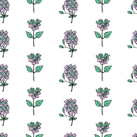 Modello floreale senza cuciture Erba curativa disegnata a mano di vettore del fiore dell'origano sbocciante isolata su fondo bianco, illustrazione botanica dell'alimento Progettazione di struttura della maggiorana per cosmetici, menu, carta da parati, tessuto