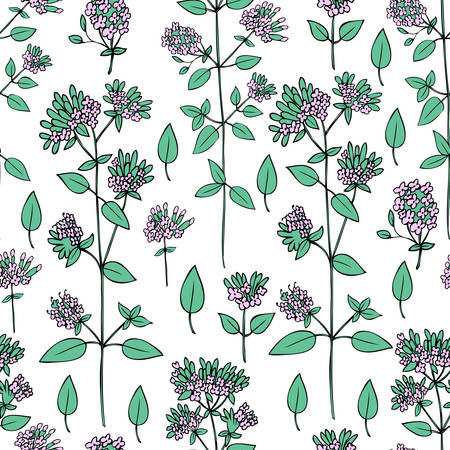 Seamless floral pattern Blossoming Oregano flowers vector hand drawn healing herb isolated on white background, food botanical illustration, Marjoram texture design for cosmetic, menu, wallpaper Vectores