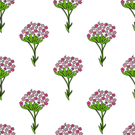 Seamless floral pattern, Valeriana officinalis hand drawn vector colorful illustration isolated on white background, for design package cosmetics, organic medicine, greeting cards, herbal green tea Illustration
