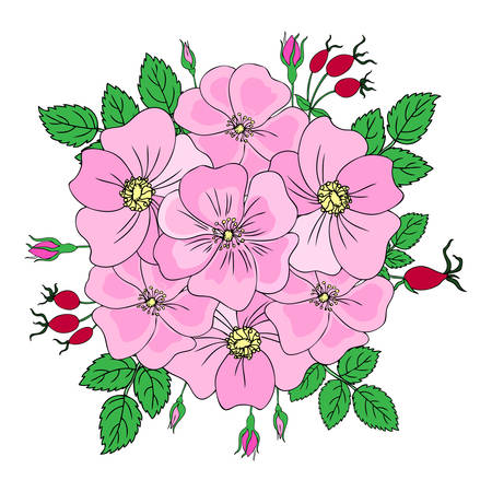 Round frame Wild rose, briar hand drawn dogrose berry vector illustration isolated on white background, decorative rosehip bouquet, holiday wreath for design cosmetic, natural medicine, herbal tea Ilustrace