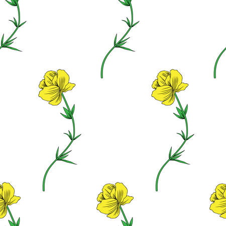 Trollius asiaticus flower, globeflower hand drawn vector sketch isolated on white backdrop, seamless floral pattern Ranunculus, Kupavka for design package, medicine, wedding invitation, greeting cards Stock Illustratie