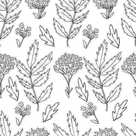 Seamless floral pattern, Valeriana officinalis hand drawn vector ink sketch illustration isolated on white background, for design package cosmetic, organic medicine, greeting cards, herbal green tea Illustration