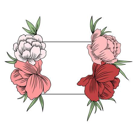 Trollius asiaticus flowers, Globeflower or Kupavna, frame bouquet vector isolated on white background, Ranunculus or Kupavka decorative label for package, medicine, wedding invitation, cosmetic, card Stock Illustratie