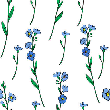 Seamless pattern Forget-me-not flowers vector illustration isolated on white background, colorful ink sketch, decorative herbal doodle, line art for design medicine, wedding invite, floral cosmetic